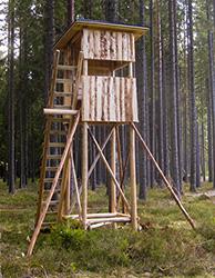 Schwarzwaldkanzel